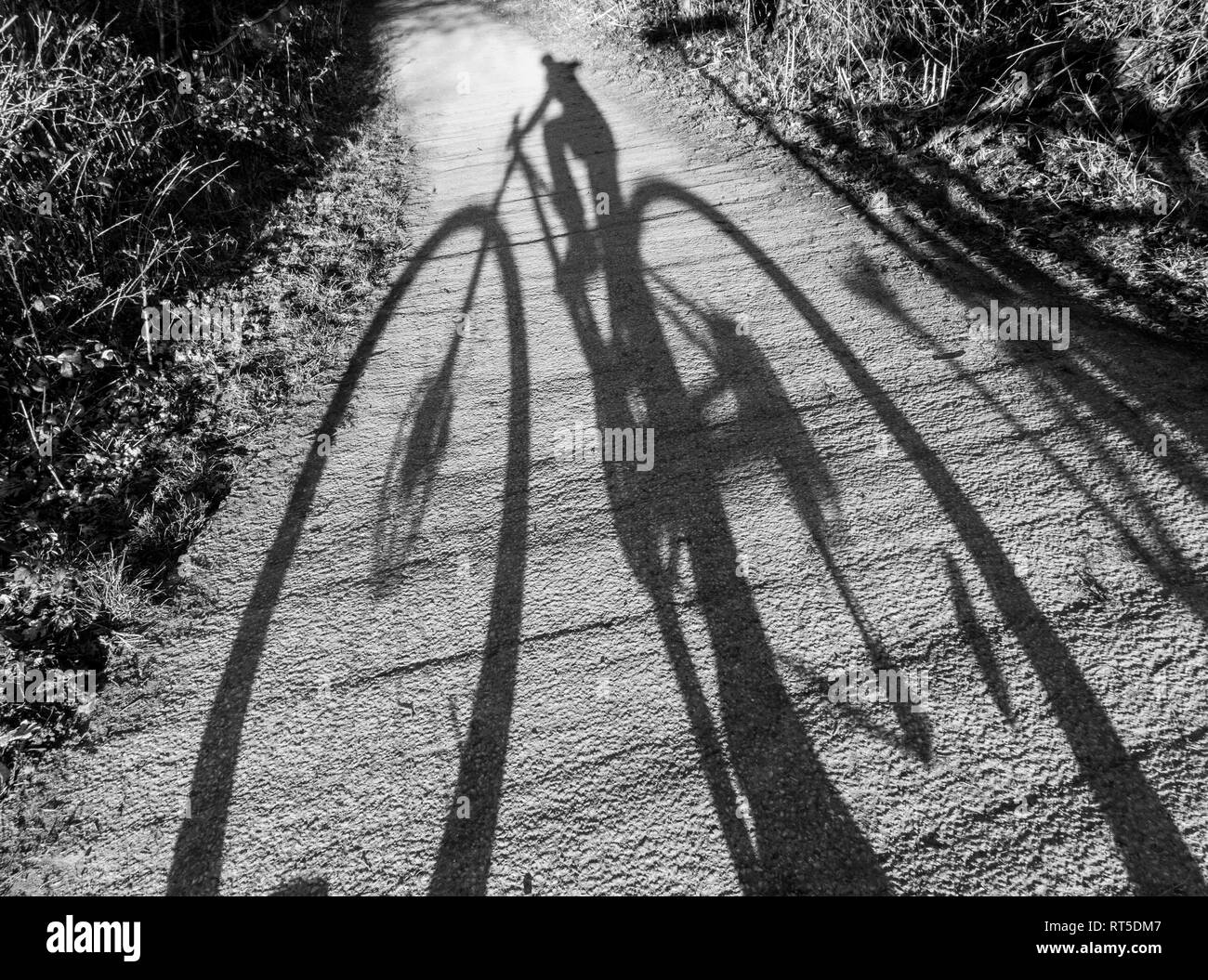 Long shadows selfie portrait taken on a bicycle - Stock Image