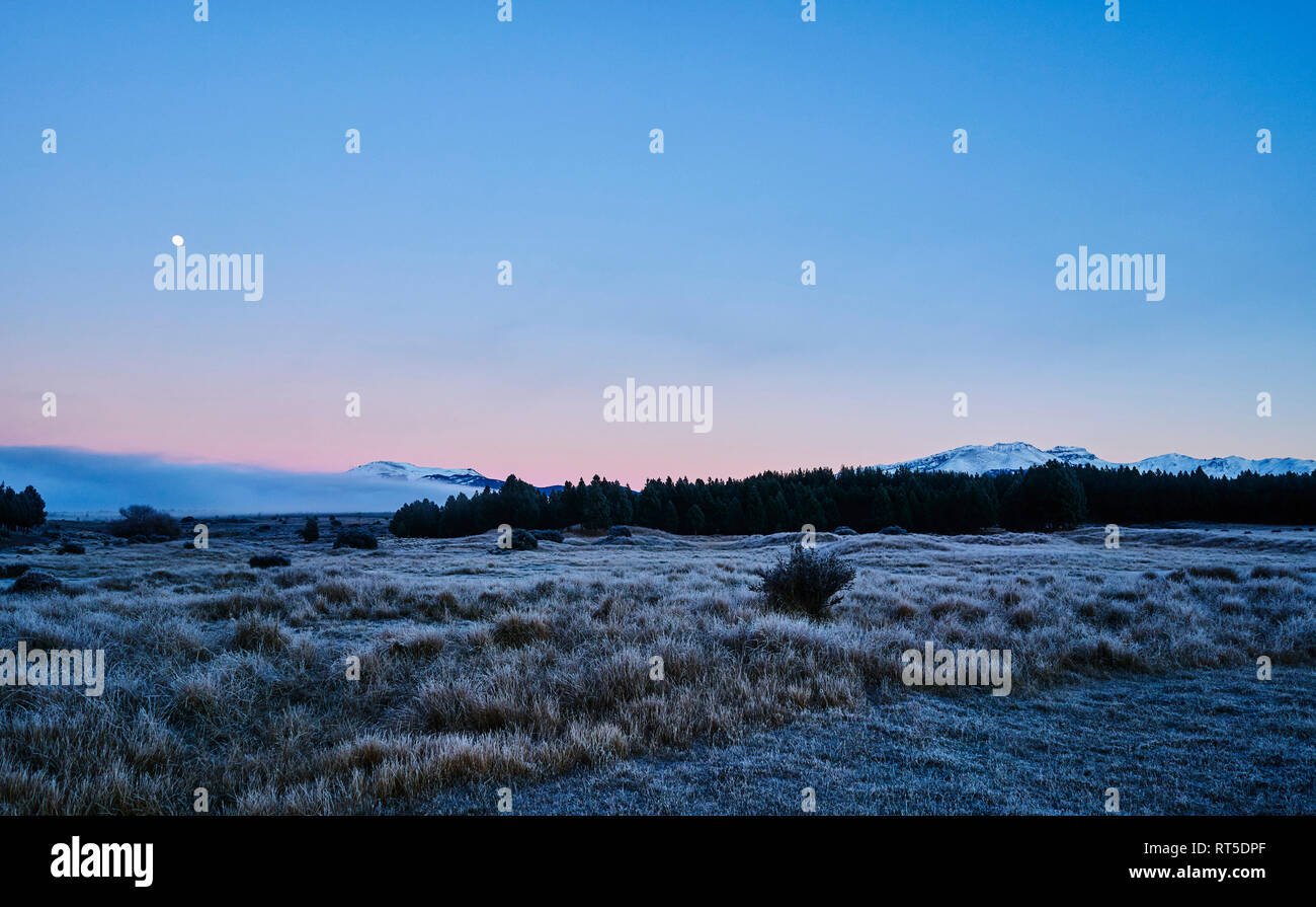 Argentina, Patagonia, Esquel, Laguna La Zeta, steppe landscape with hoarfrost at twilight - Stock Image