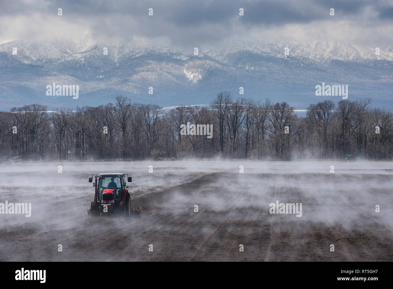 Hokkaido, Tractor seeding a field while it is vaporating from the warm ground - Stock Image
