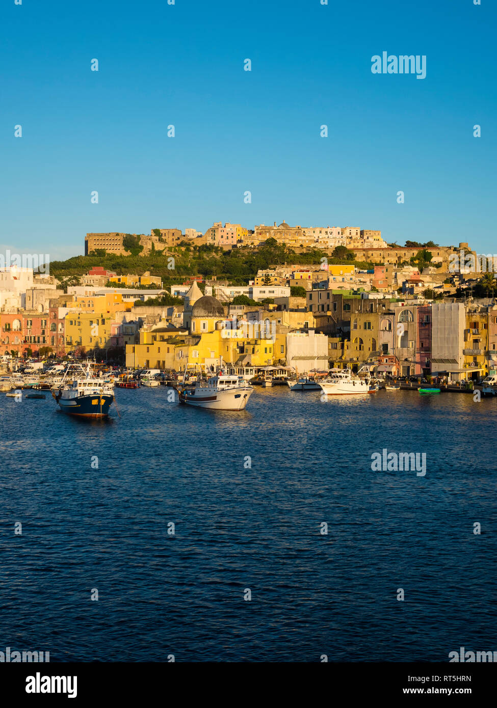 Italy, Campania, Naples, Gulf of Naples, Procida Island, town in the morning light - Stock Image