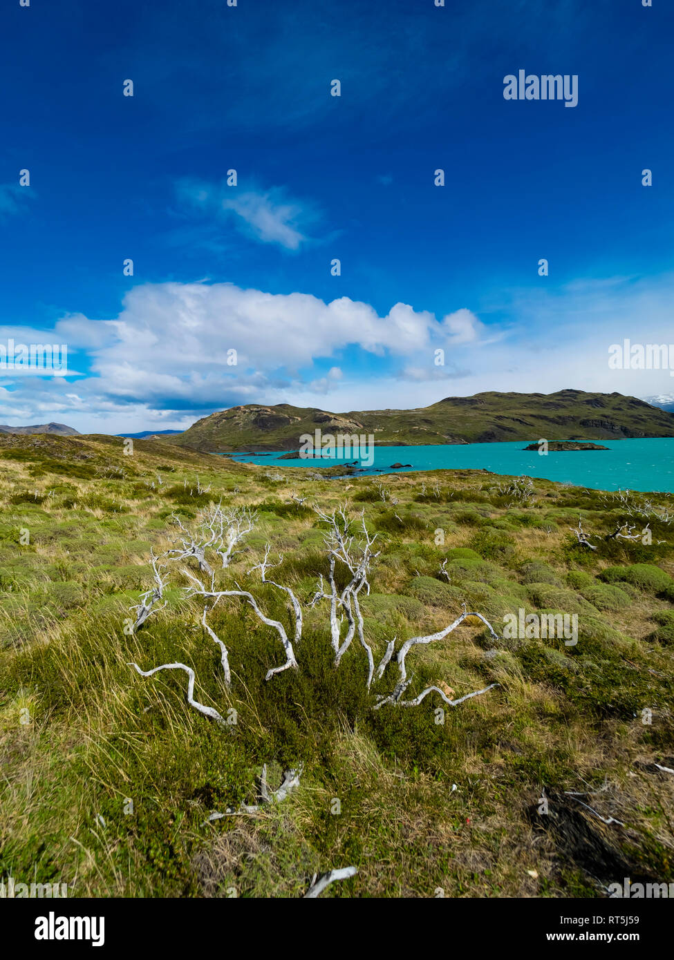 Chile, Patagonia, Torres del Paine National Park, Lago Nordenskjold - Stock Image