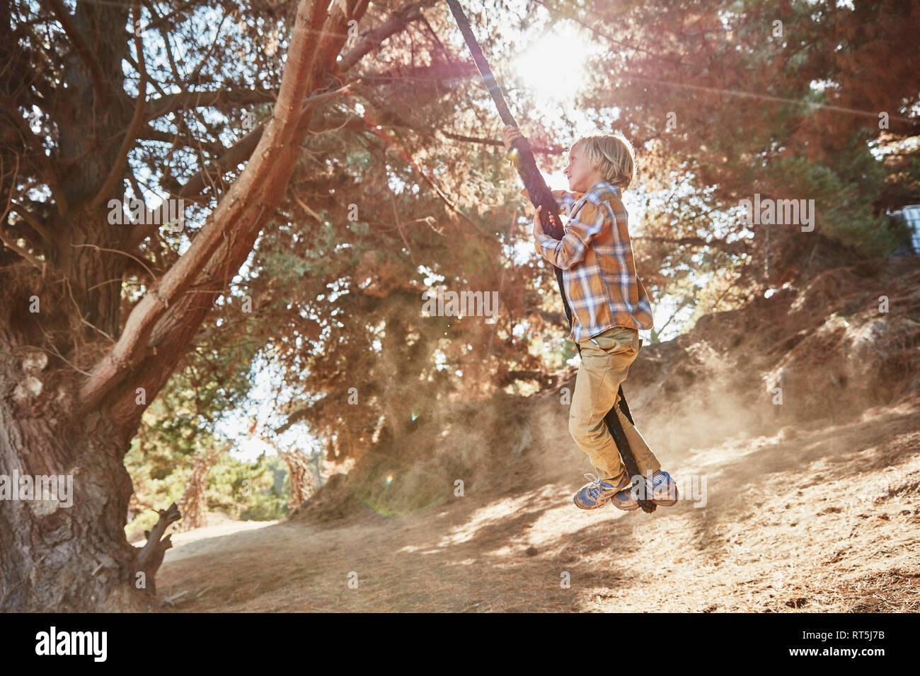 Boy swinging on a rope in backlight - Stock Image