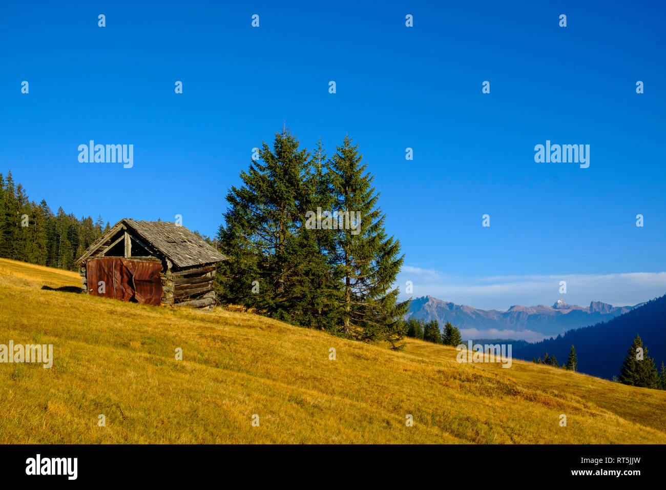 Germany, Bavaria, Swabia, Allgaeu Alps, Oberallgaeu, near Grasgehren, small hut and Hochvogel mountain - Stock Image