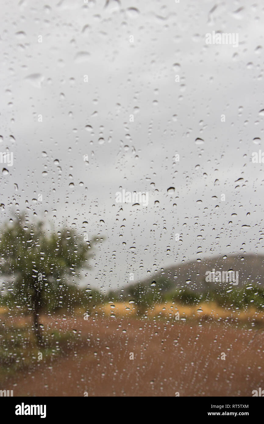 Raindrops on a window looking out at the South African bushveld. - Stock Image