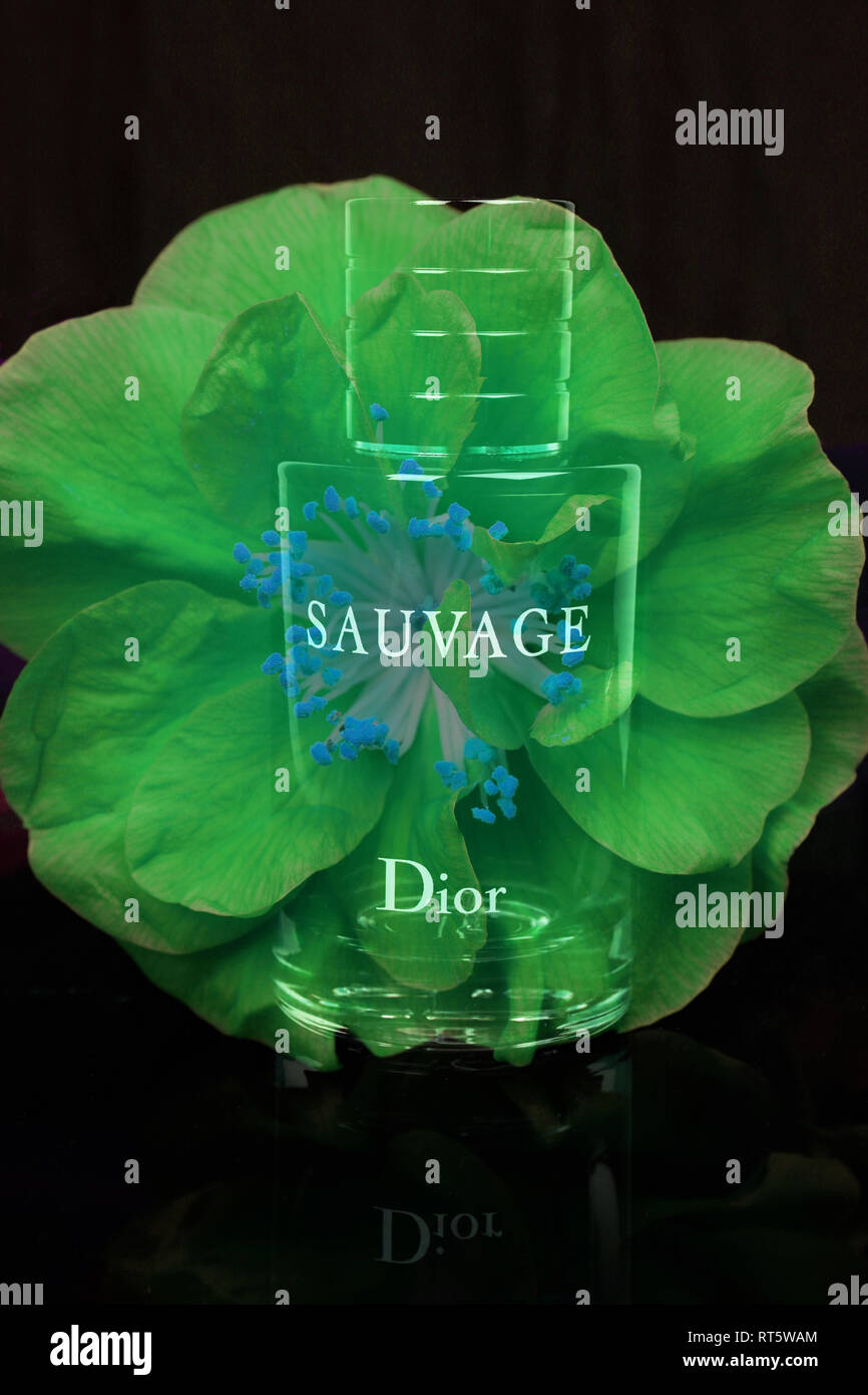 Bottle of Christian Dior Sauvage . Perfume for men. France - Stock Image