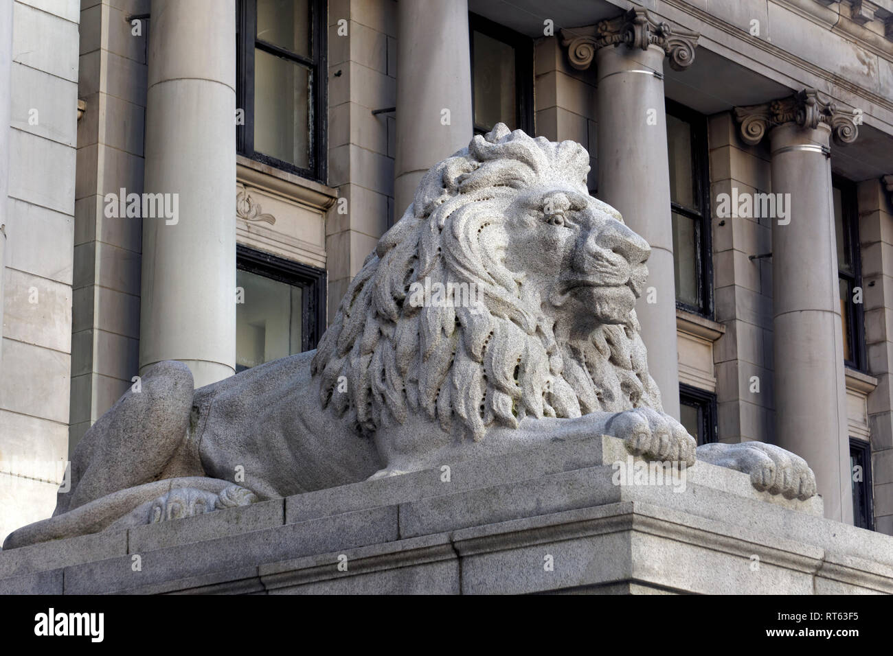 African lion granite statue outside the Vancouver Art Gallery, formerly the old court house building, Vancouver, BC, Canada - Stock Image