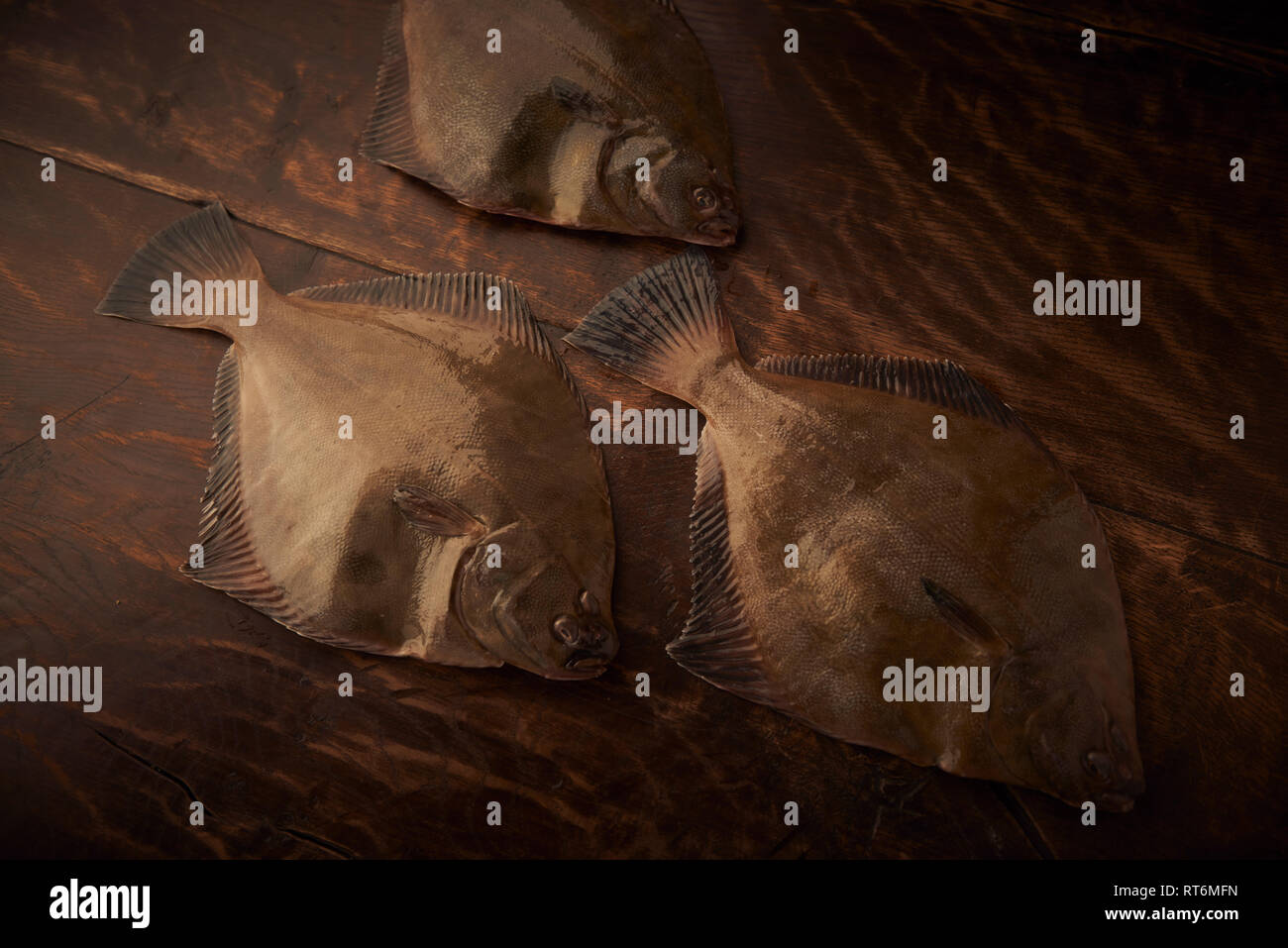Three fresh flatfish look as though they are swimming in a school through a timber sea. The ready to be prepared for dinner. - Stock Image