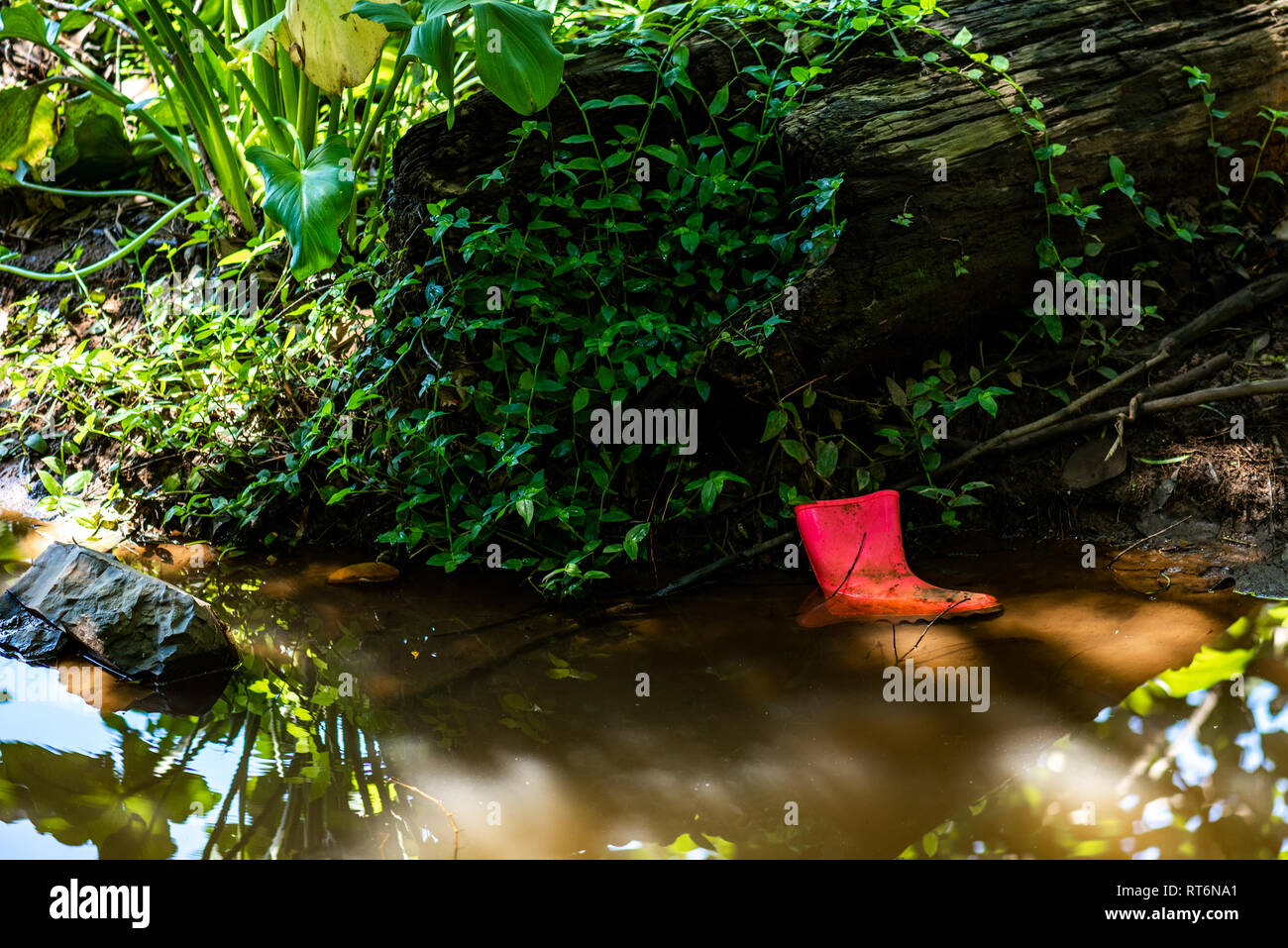 A lost rubber boot lies on the bank of a stream. - Stock Image