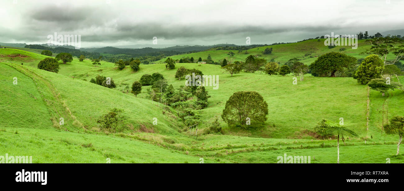 Atherton Tableland, Queensland, Australia - Stock Image