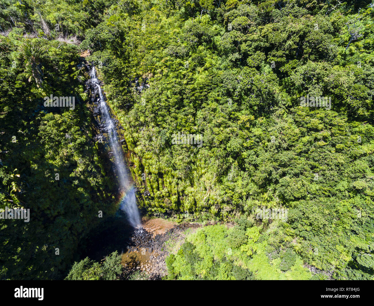 Mauritius, Black River Gorges National Park, Aerial View of Mare Aux Joncs Waterfall - Stock Image