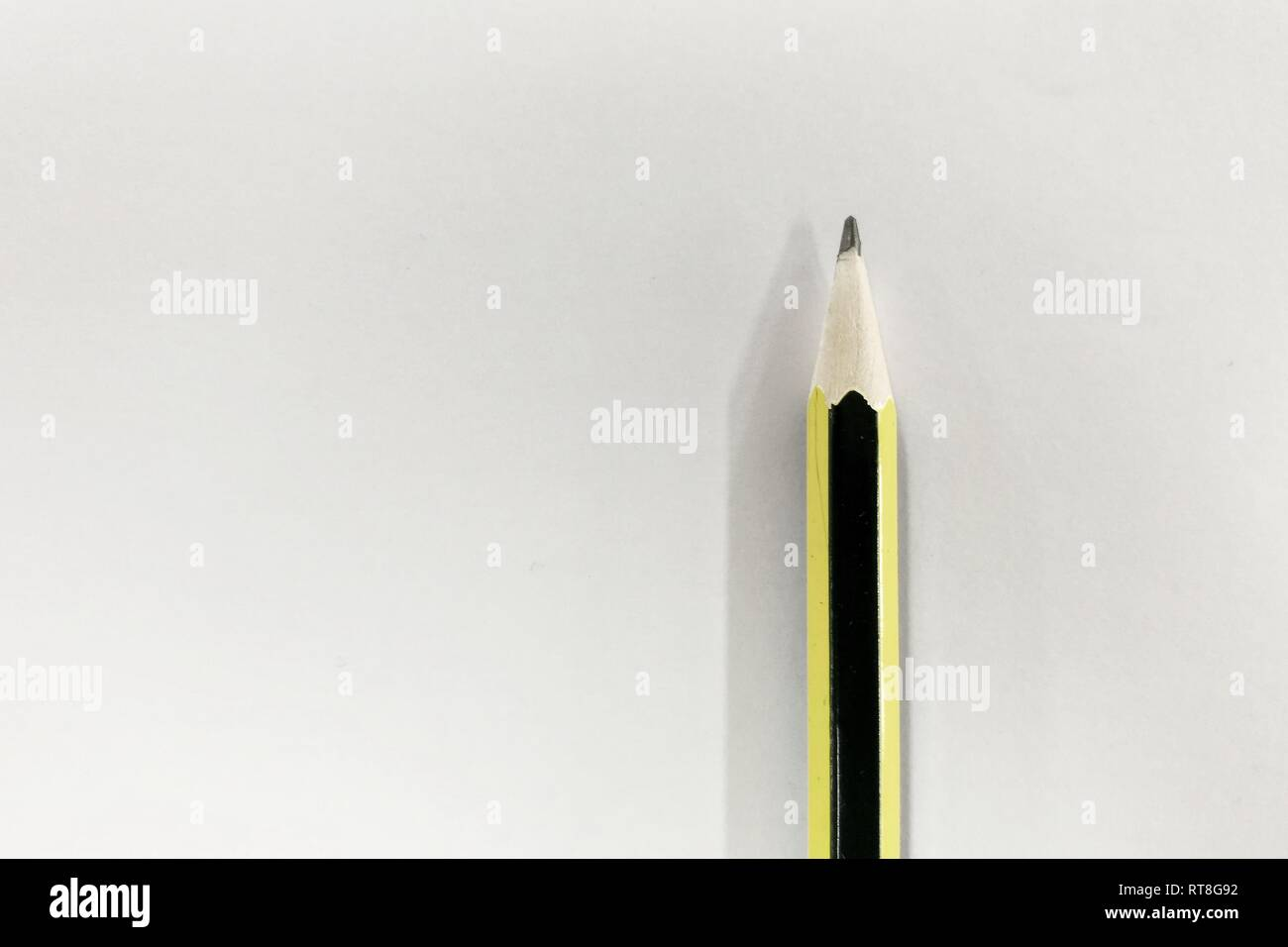 pencil on plain white paper. background for idea formulation and writing concepts. - Stock Image