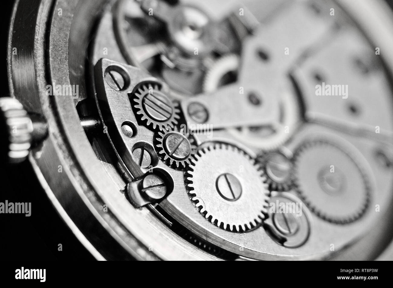 Mechanism of wrist watches in the clear. Shallow depth of field - Stock Image