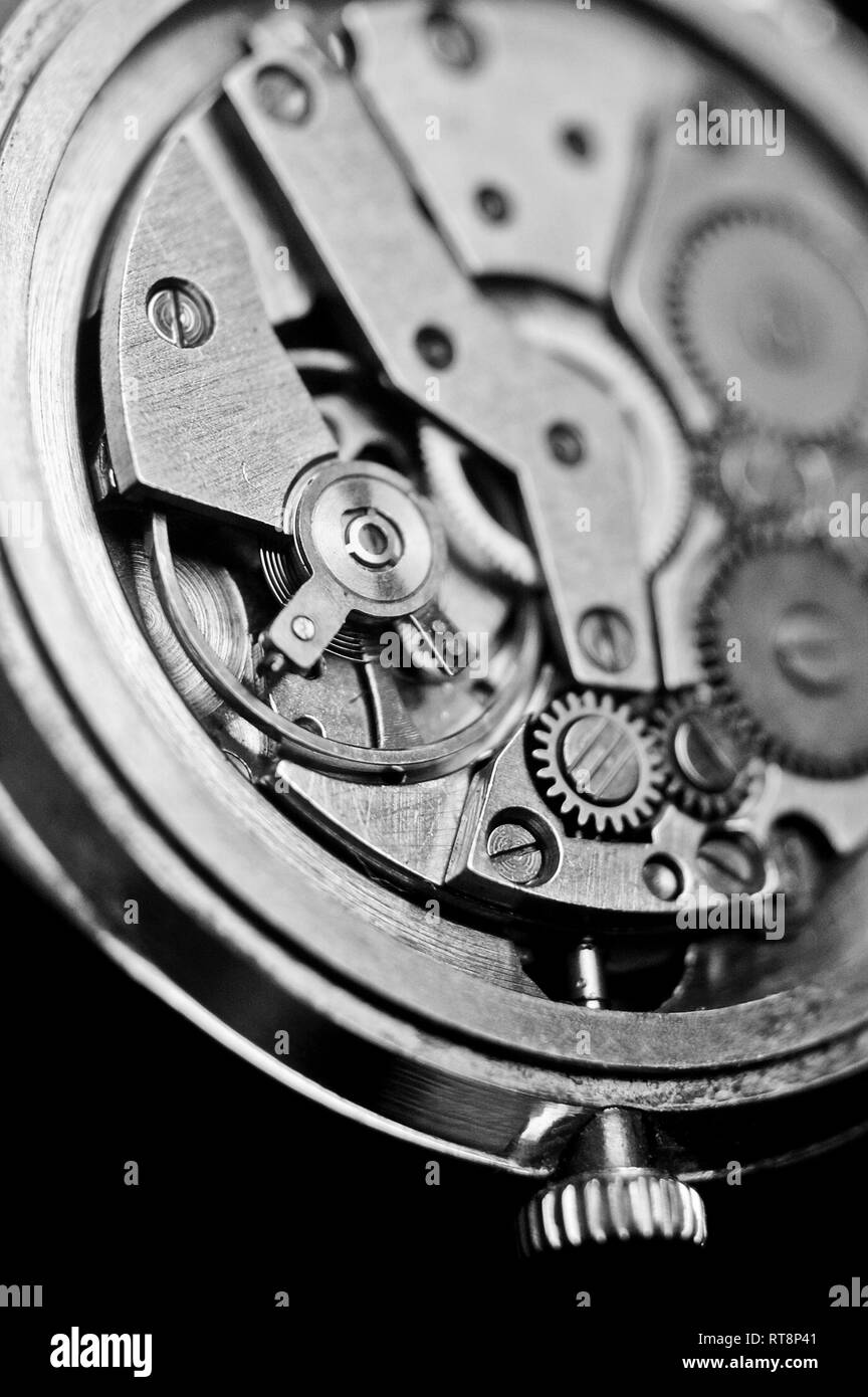 Mechanism of wrist watches in the clear closeup. Shallow depth of field - Stock Image