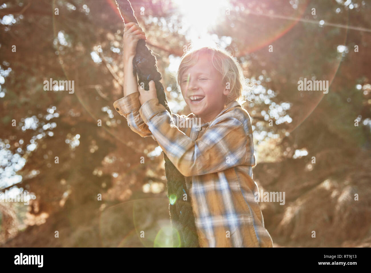 Happy boy swinging on a rope in backlight - Stock Image