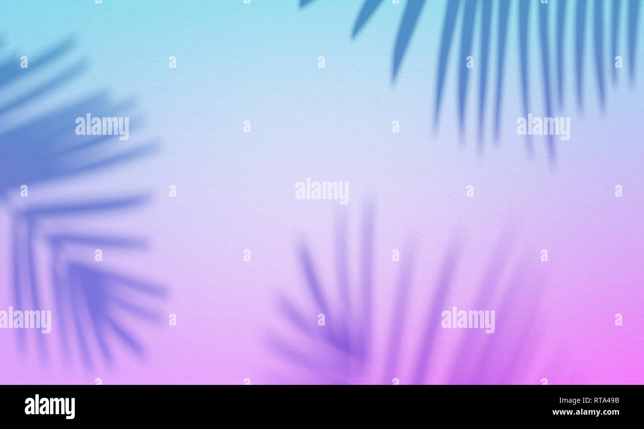 3d Illustration Of Palm Leaves Shade On Blue Pink Background New