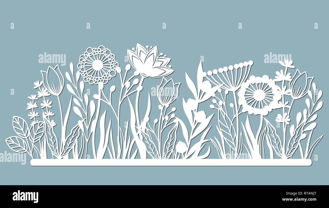 Echinacea, chamomile, schefler, noble hepatica, zephyrantes, stokesia. Vector illustration. Set of paper flower, stickers. Laser cut. Set template for - Stock Image
