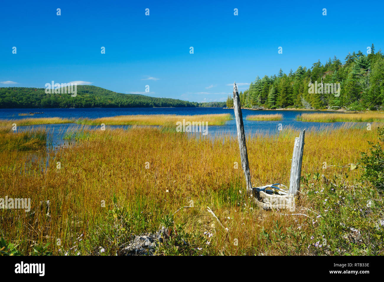 Eagle Lake seen from the grassy shore on a sunny afternoon. Acadia National Park, Maine, USA. Stock Photo