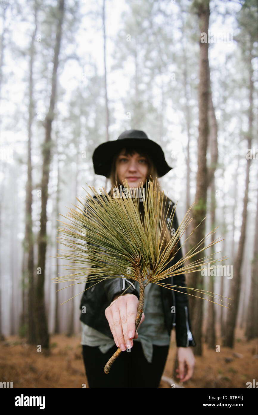 Young woman standing in evergreen forest and showing tree branch while looking at camera - Stock Image