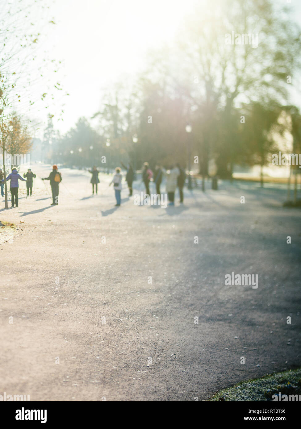 Unrecognizable group of seniors friends workout in public Orangerie park with hiking trecking alpine poles for a healthy spirit - tilt-shift lens used  - Stock Image