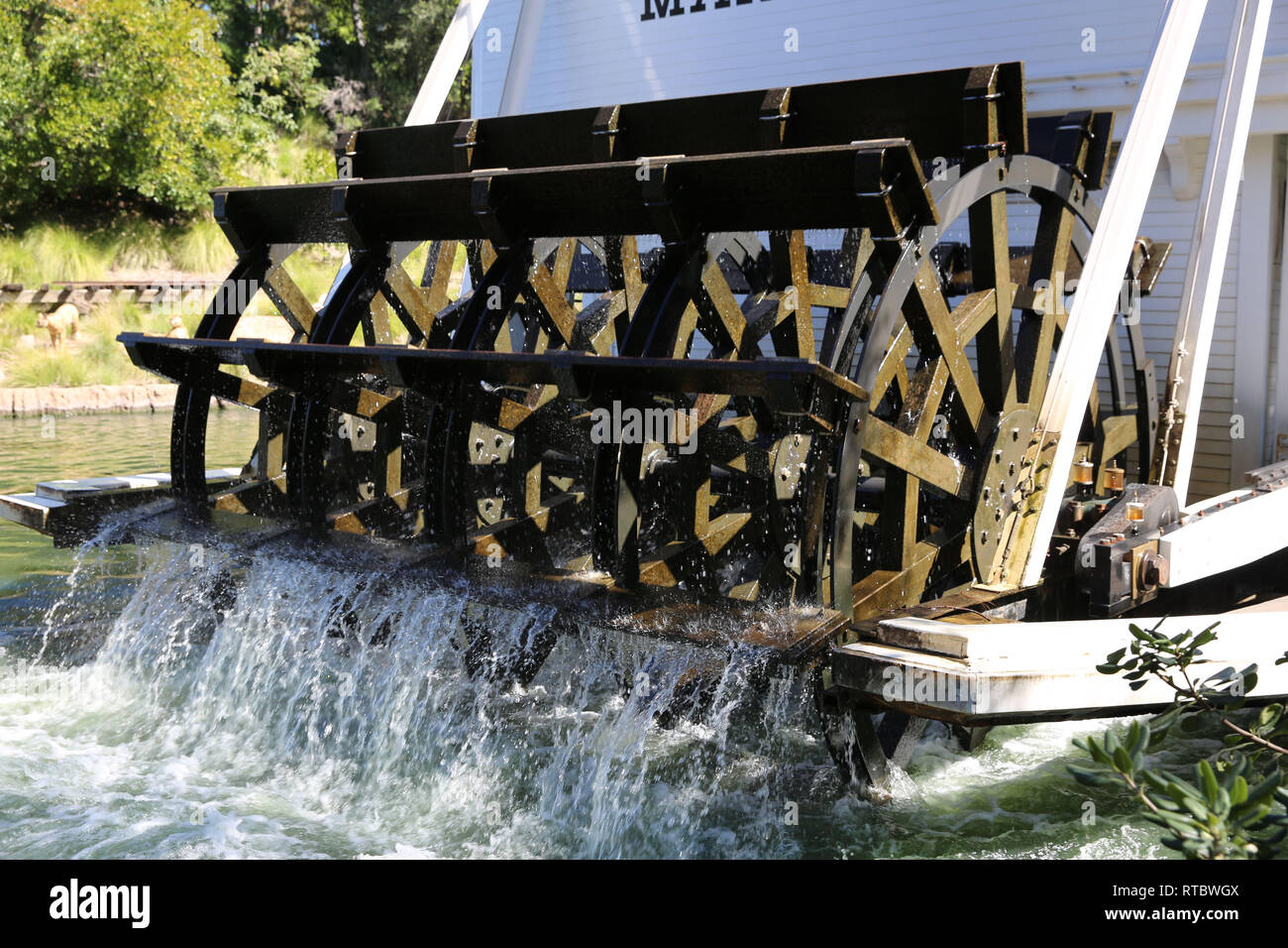 Riverboat Paddles - Stock Image
