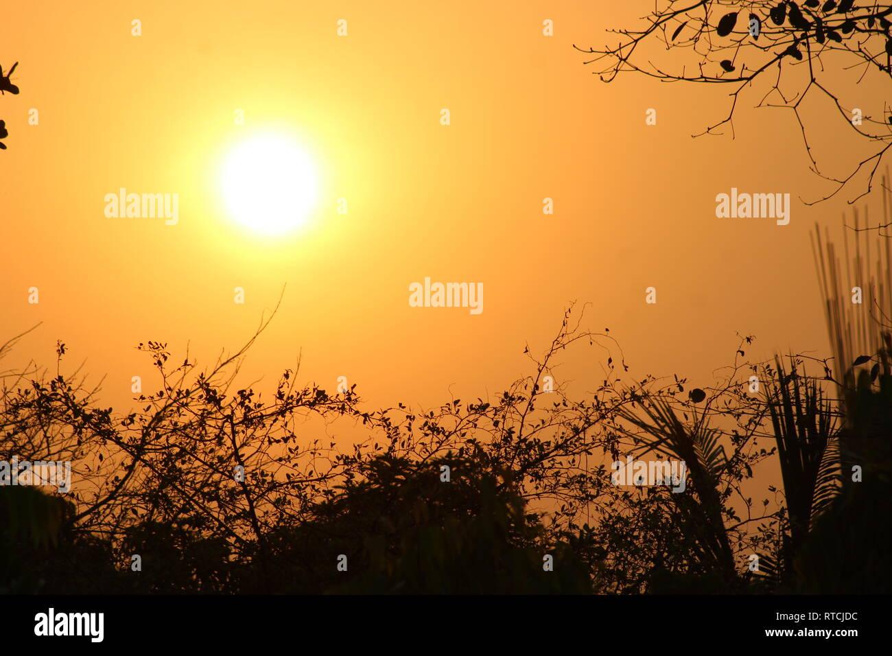 Sun rise. - Stock Image