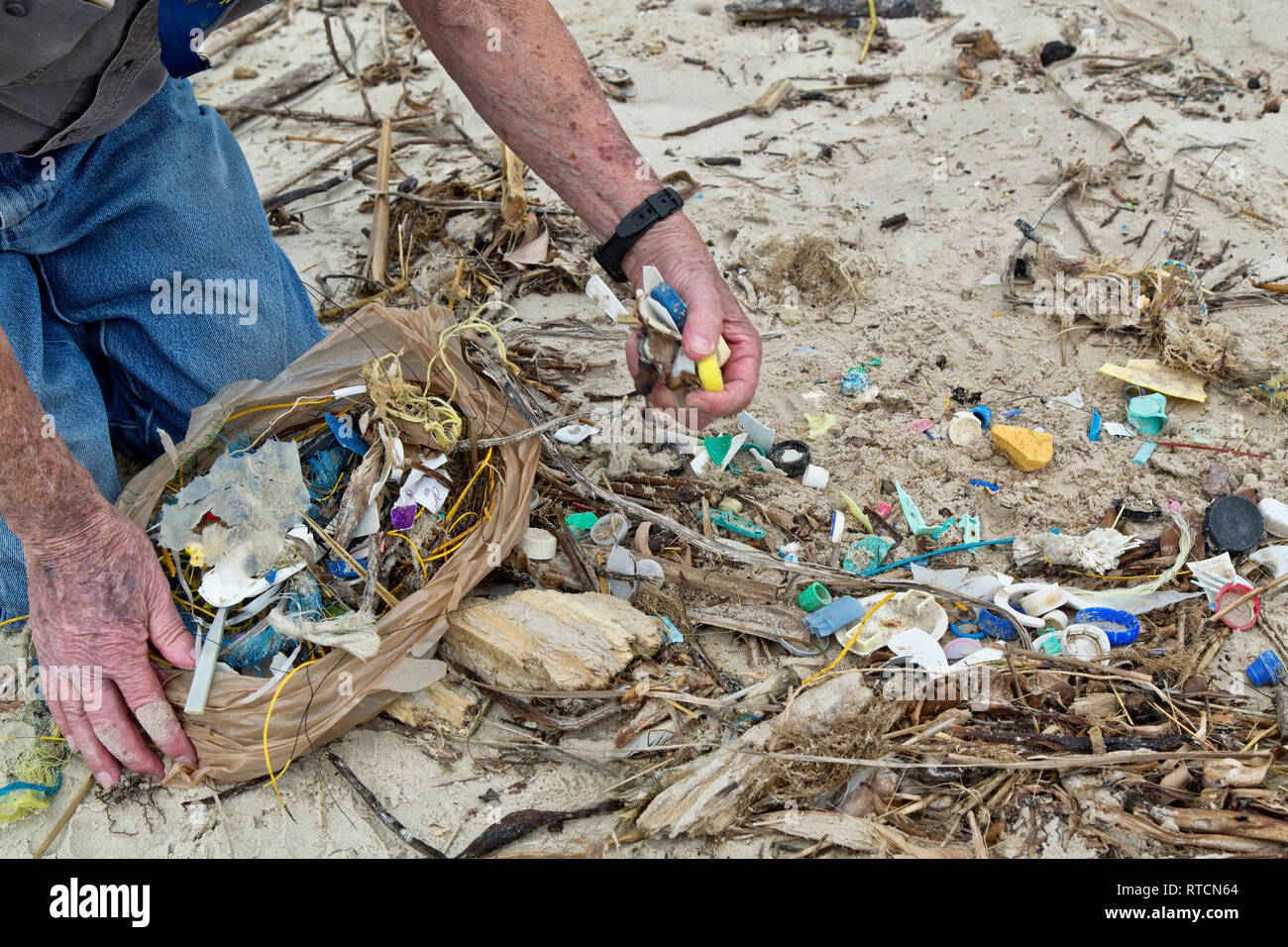 Volunteer cleaning up trash from coastal beach, plastics, manufactured products, fishing line, rope, bottle caps, Gulf Of Mexico. - Stock Image