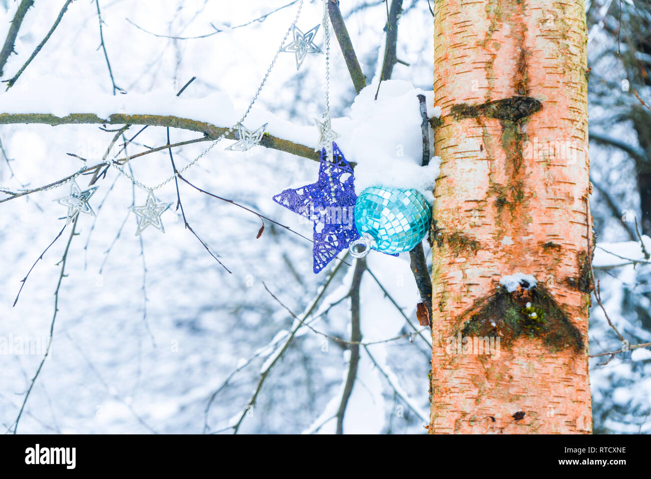 Christmas ornaments hanging on a tree in a snowy forest after a snow storm, depicting, winter time, cold weather, Christmas & holiday season. Stock Photo