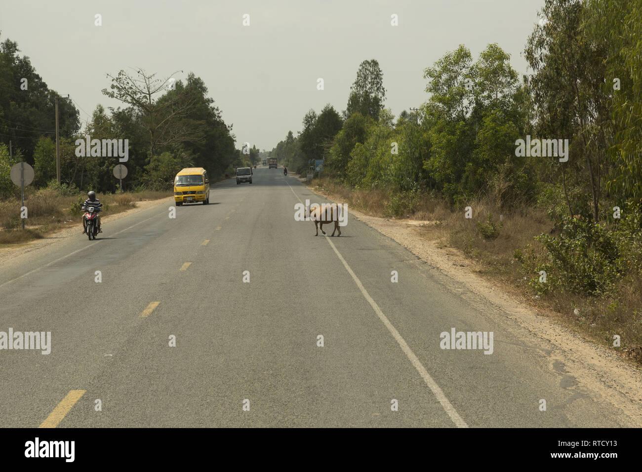 Road Bavet - Phnom Penh in Cambodia - Stock Image