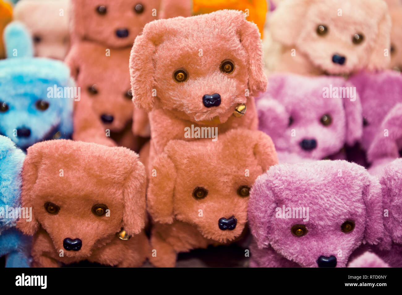 Group of small cute asian stuffed toy dogs in different colors, with bells around the neck, standing on a shelf in a toy shop in Manila, Philippines - Stock Image