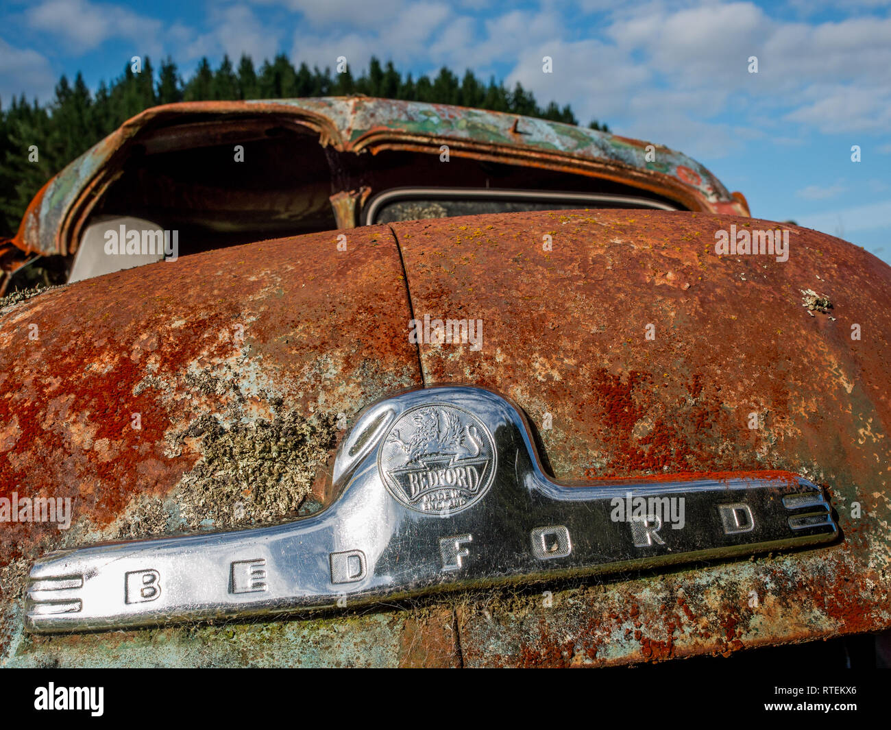 Bedford Vehicle badge on derelict Bedford truck,  abandoned, rusting, with lichen growing, Endeans Mill, Waimiha, Ongarue, King Country, New Zealand - Stock Image