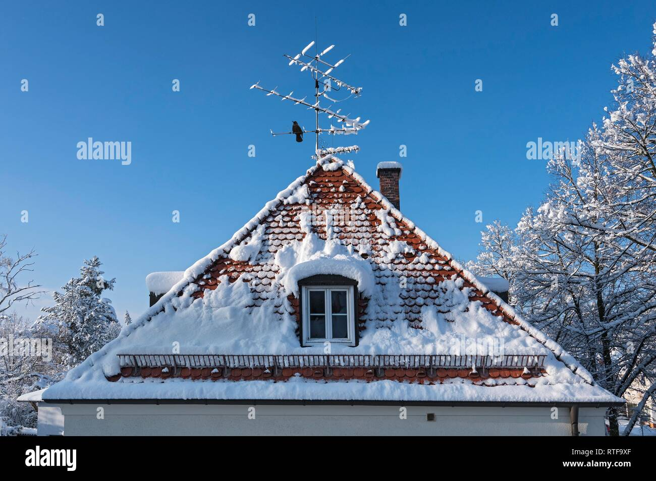 House roof with snow in winter, Munich, Upper Bavaria, Bavaria, Germany - Stock Image