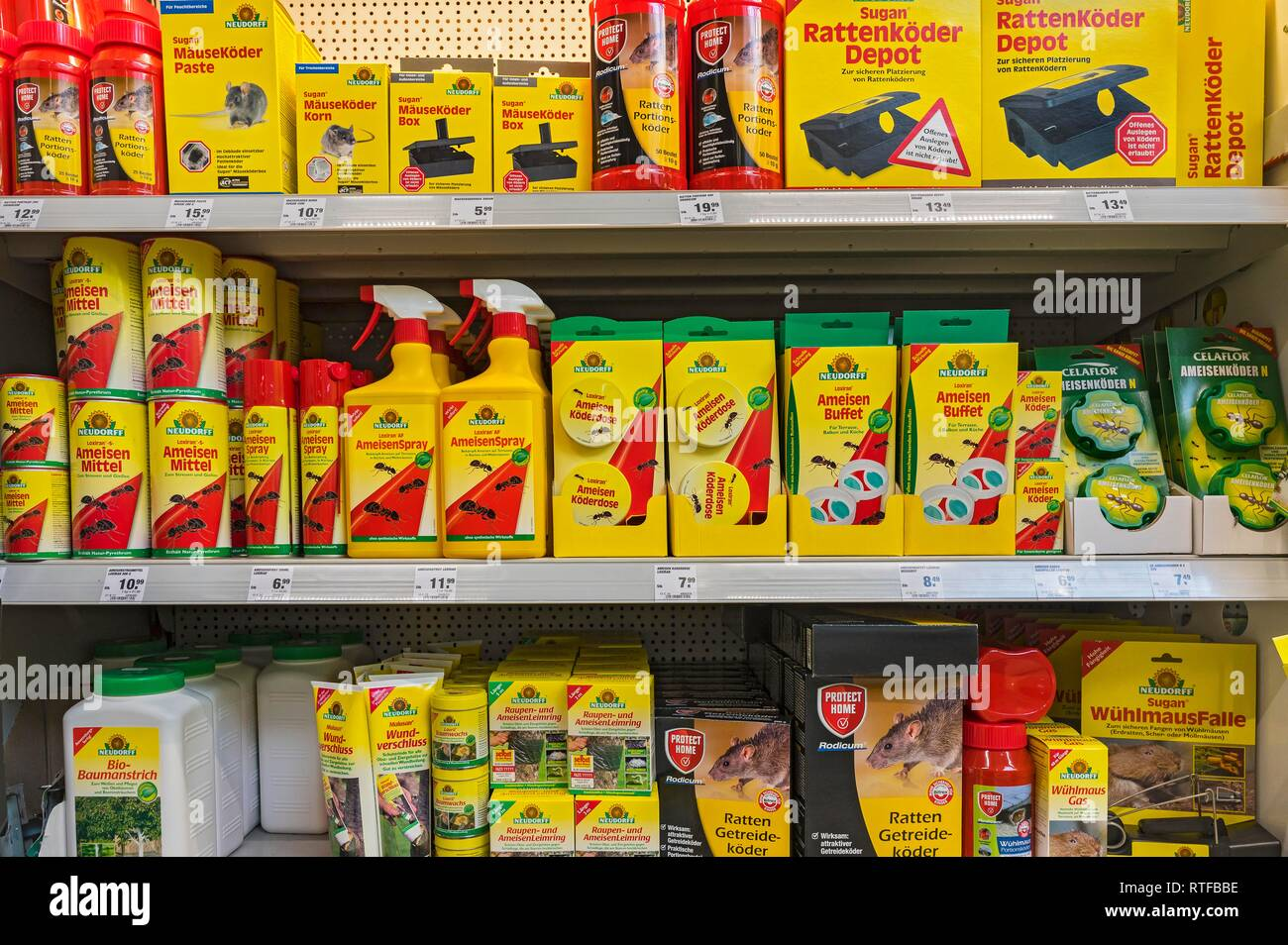Rat poison, mouse bait and ant poisons at the DIY store, Munich, Upper Bavaria, Bavaria, Germany - Stock Image