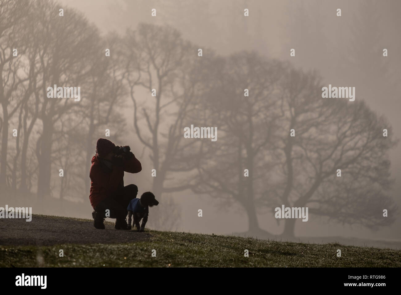 A photographer with a dog captures a shot on a misty morning near Elterwater, Lake District, UK Stock Photo