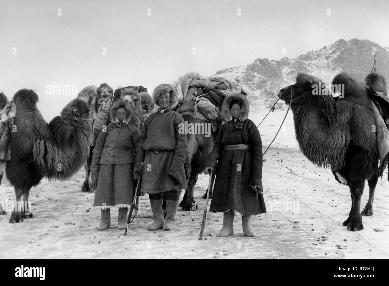 asia, mongolia, cameleers in the desert, 1958 - Stock Image