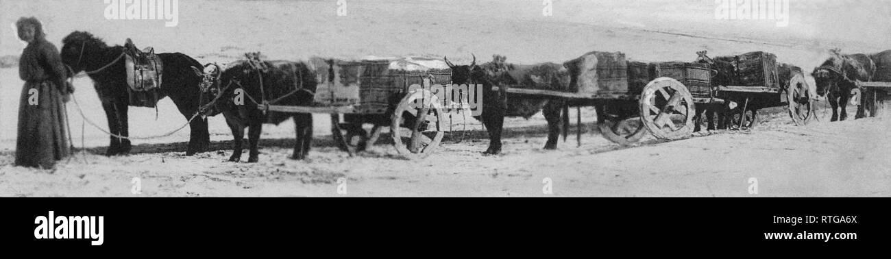 mongolia, 1910-20 - Stock Image