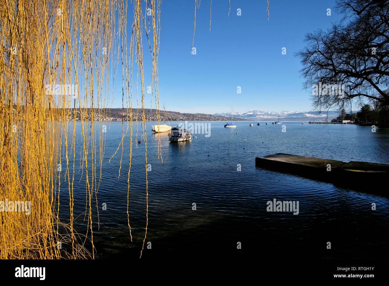 Blick Ÿber den ZŸrichsee mit Segelbooten auf die schneebedeckten Schweizer Alpen. Stock Photo