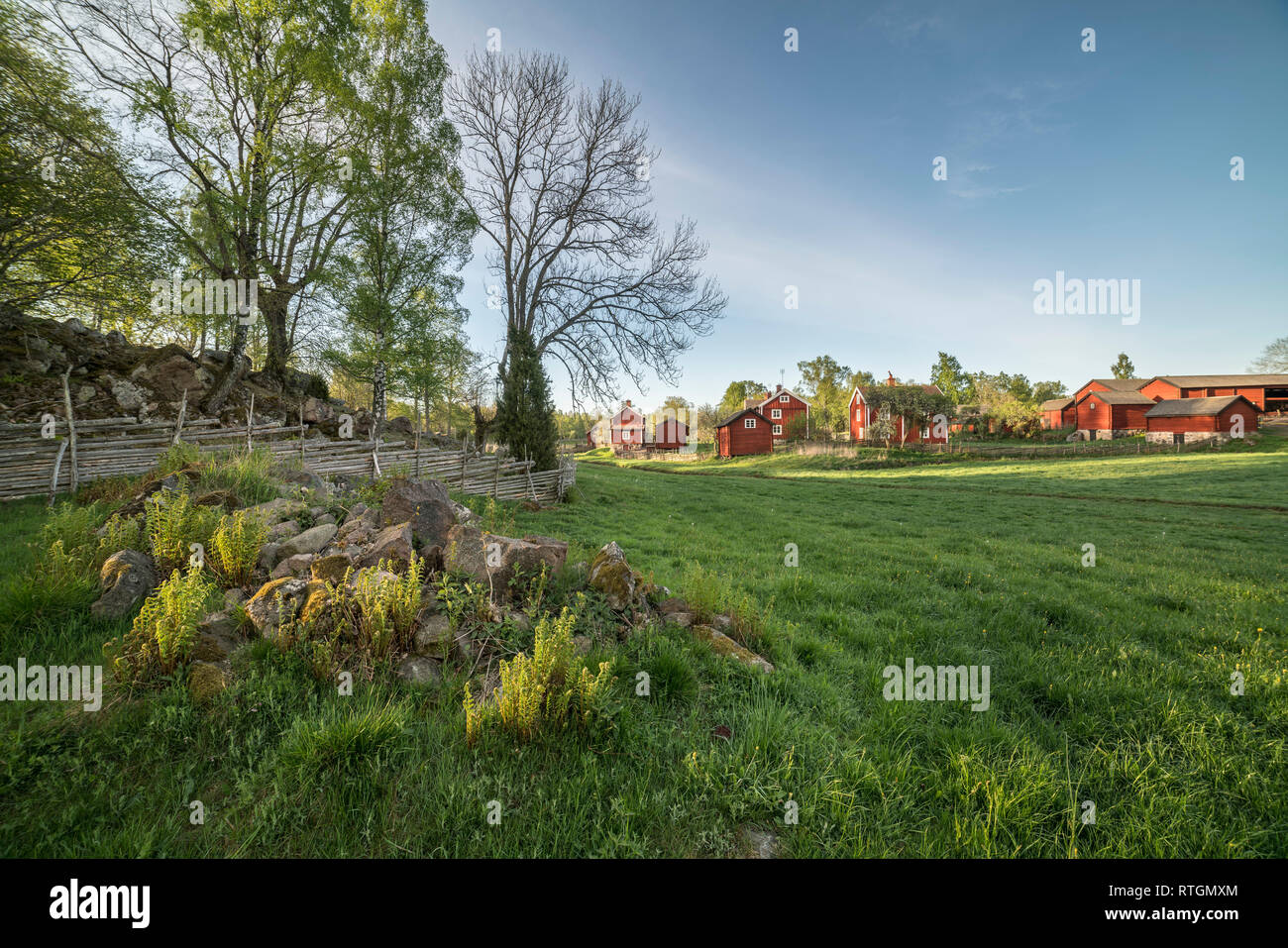 Old farm houses and traditional roundpole fence in a rural landscape at the village Stensjo by in Smaland, Sweden, Scandinavia - Stock Image
