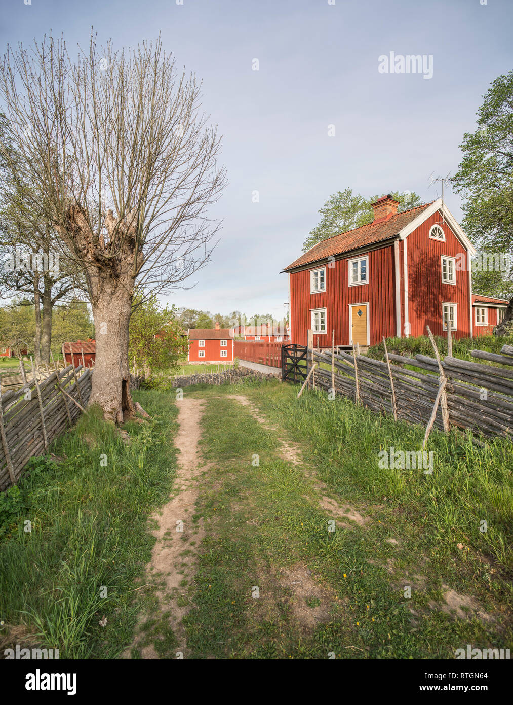 Old farm house and traditional roundpole fence in a rural landscape at the village Stensjo by in Smaland, Sweden, Scandinavia - Stock Image