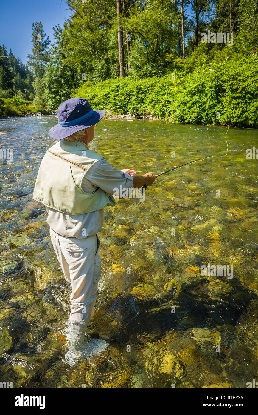 A 70 year old man fly fishing in the Cedar River, Western Washington, USA. Stock Photo