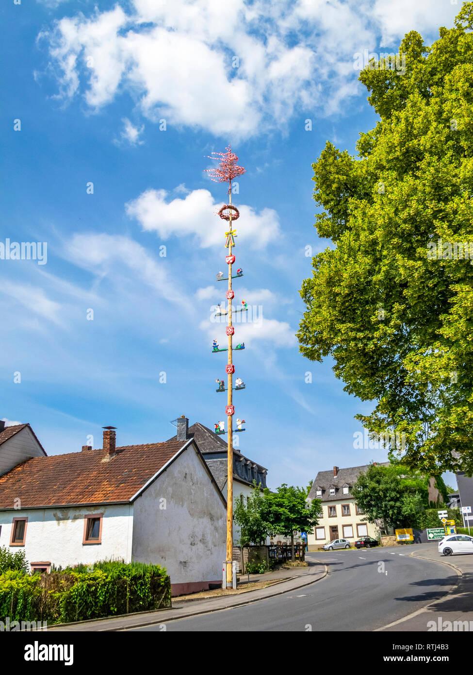 Erected maypole, Maibaum in July, Schoenecken, Rhineland-Palatinate, Germany decorated with emblems depicting local crafts and industry - Stock Image