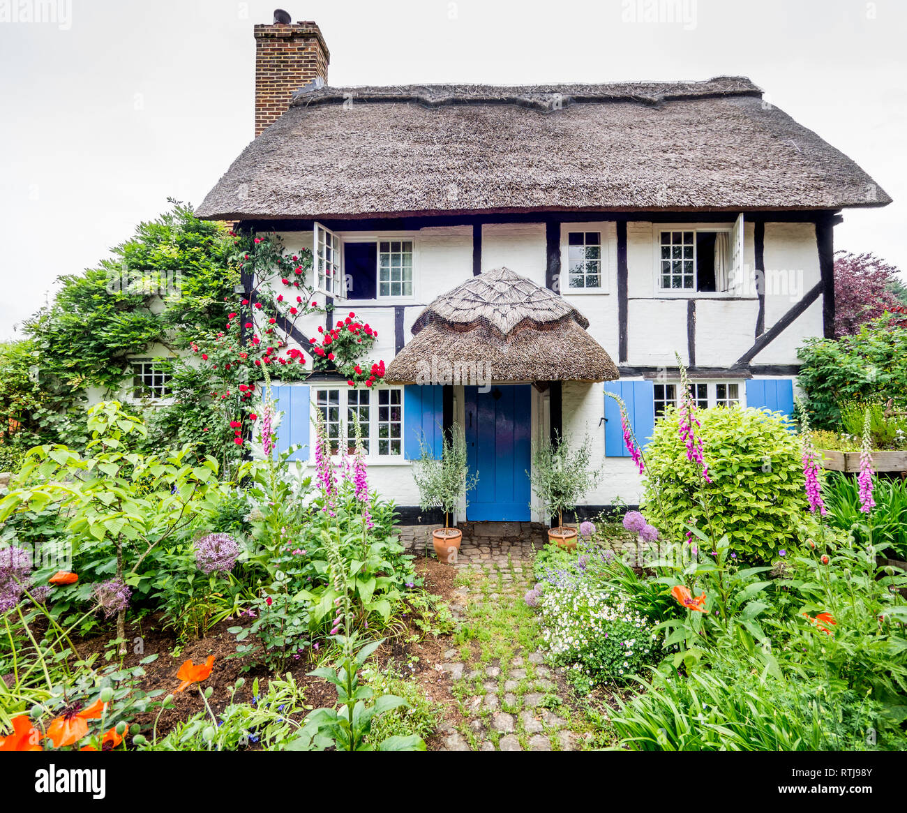 English Cottage Village: English Cottage Garden Path Flowers Stock Photos & English