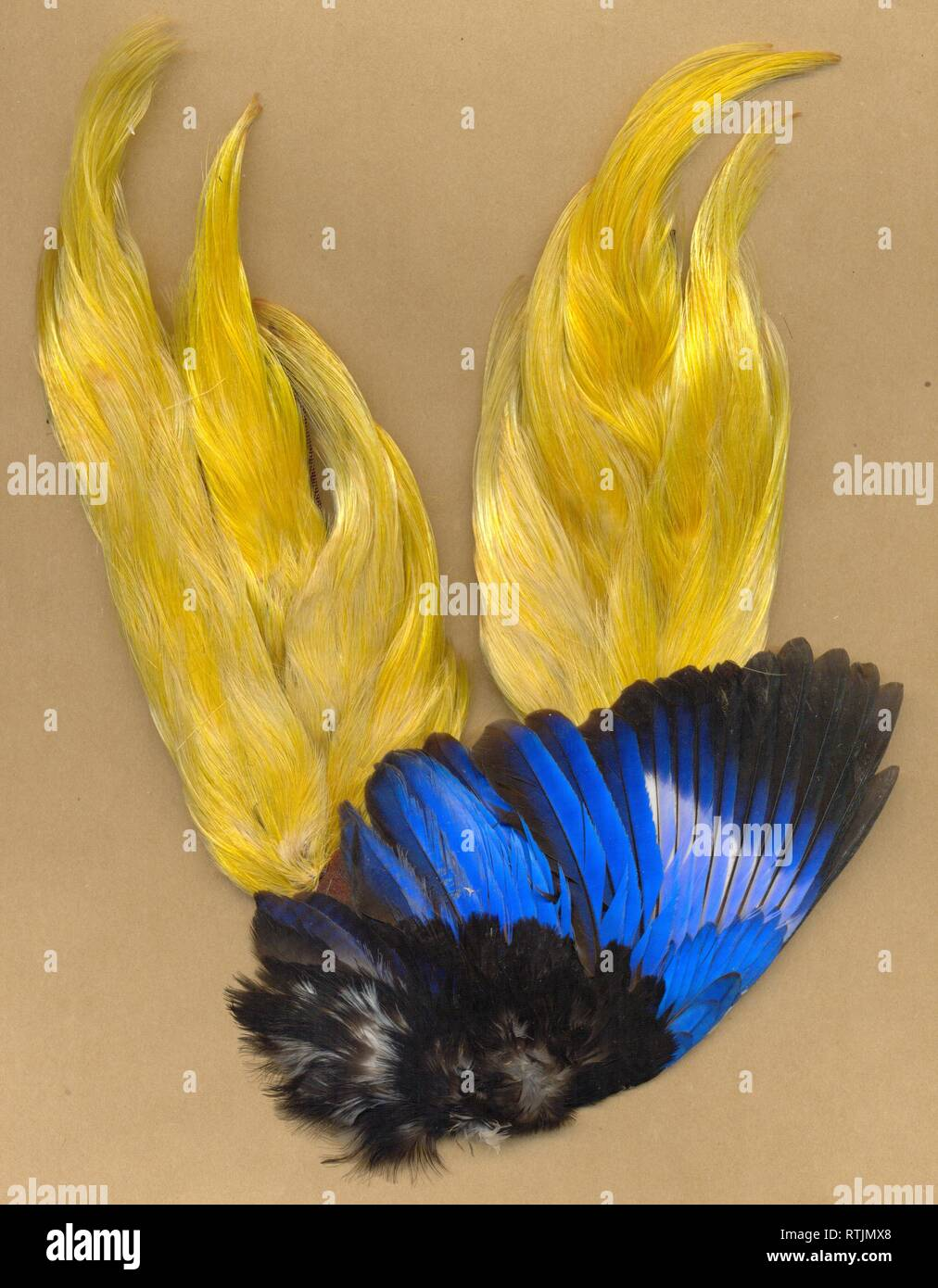 feathers from Victorian milliner's stock circa 1885 - Stock Image