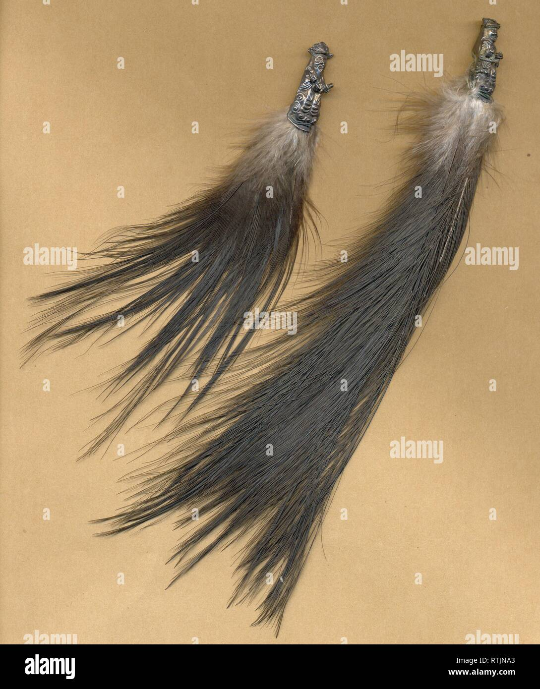 feathers from Victorian milliner's stock circa 1885 showing metal ornamental metal fix - Stock Image