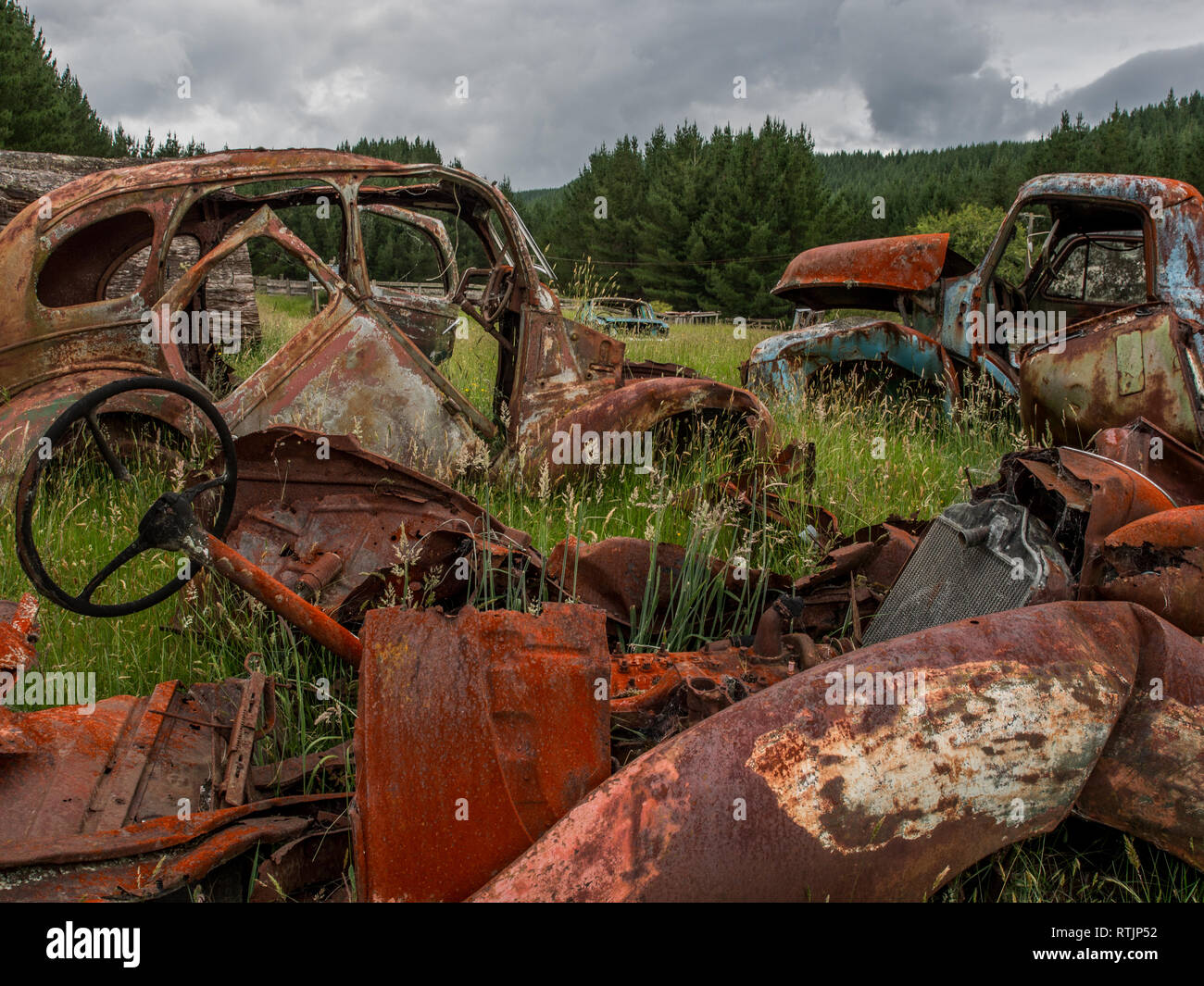 Wrecked vehicles, abandoned rusty decaying into long grass,  Endeans Mill, Waimiha, Ongarue, King Country, New Zealand - Stock Image