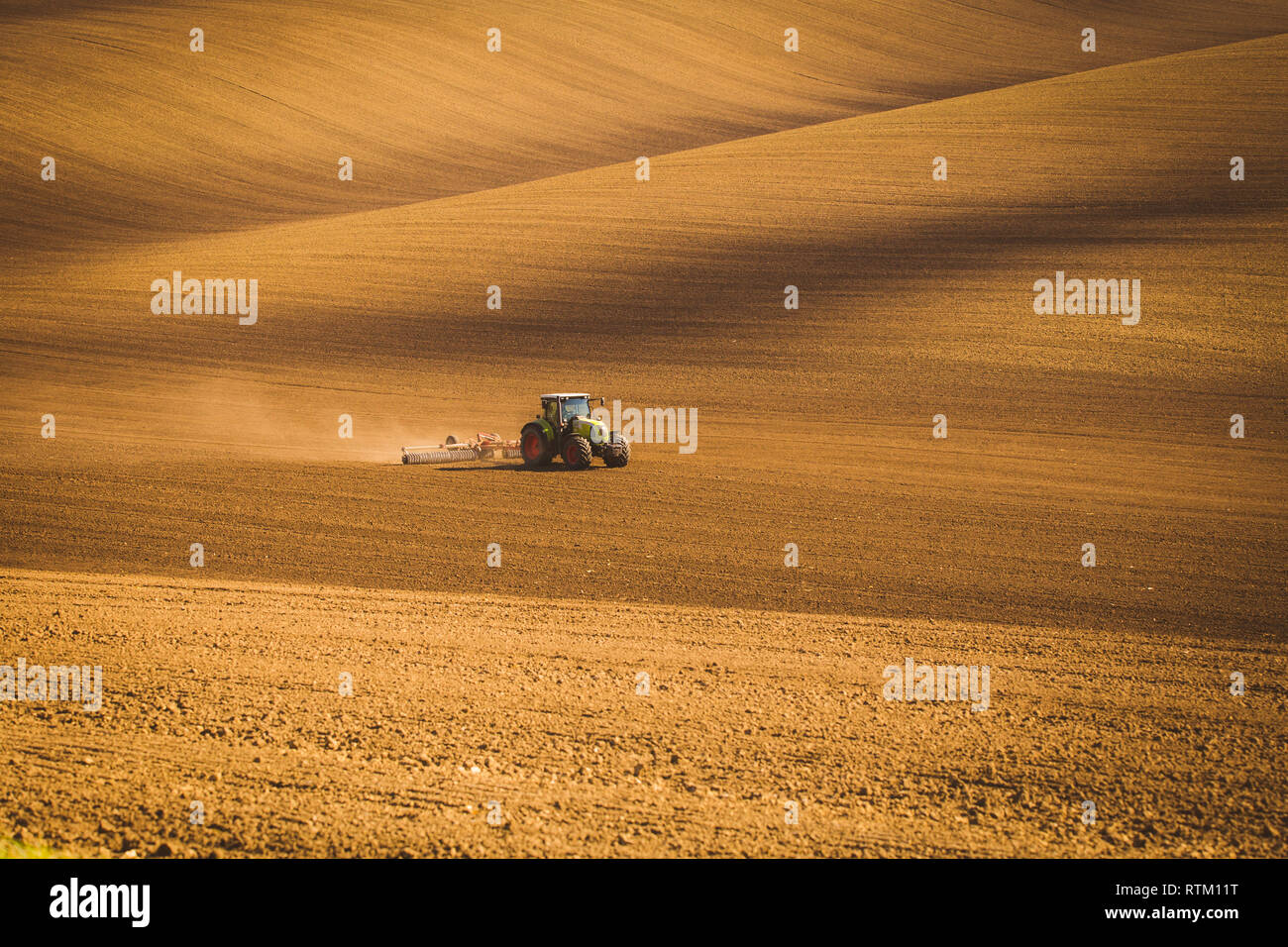 Tractor during autumn work in the fields of South Moravia at sunset Stock Photo