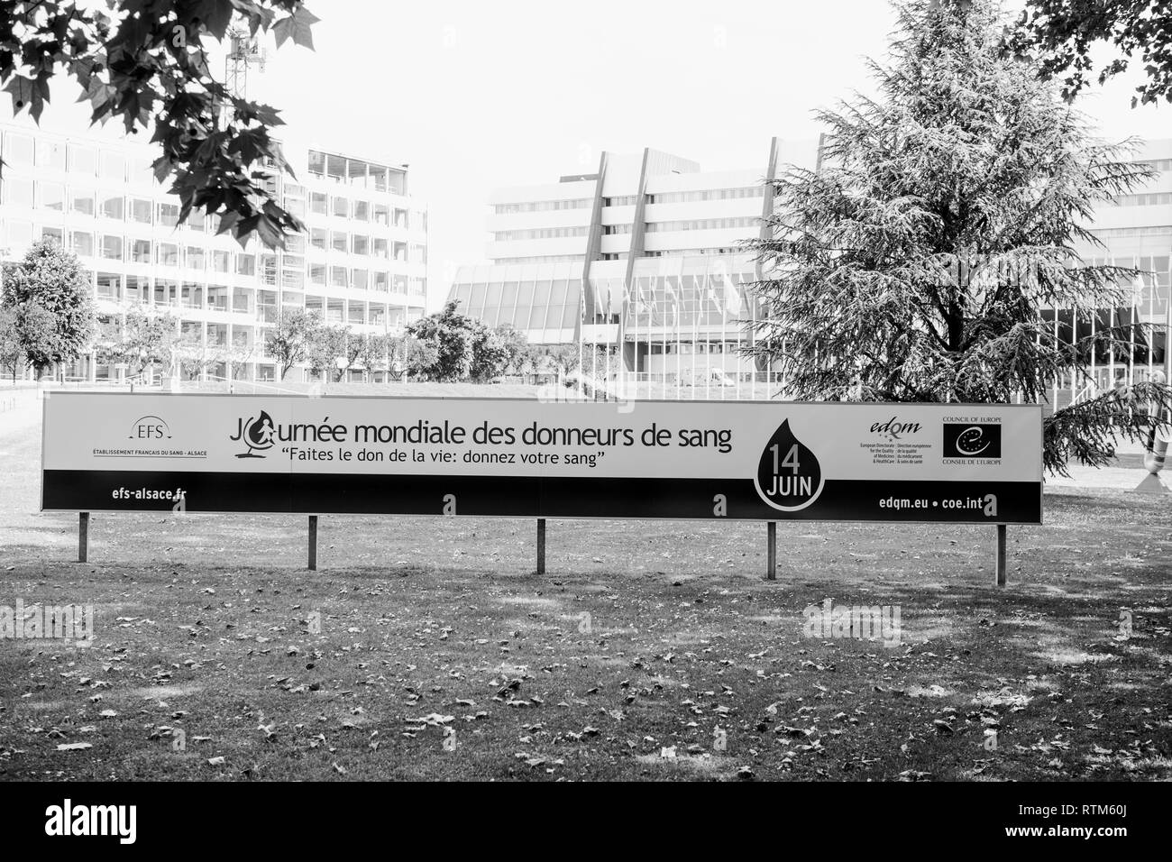 STRASBOURG, FRANCE - JUNE  6, 2015: World Blood Donor Day advertising banner in front of the Council of Europe in Strasbourg EDQM - Stock Image
