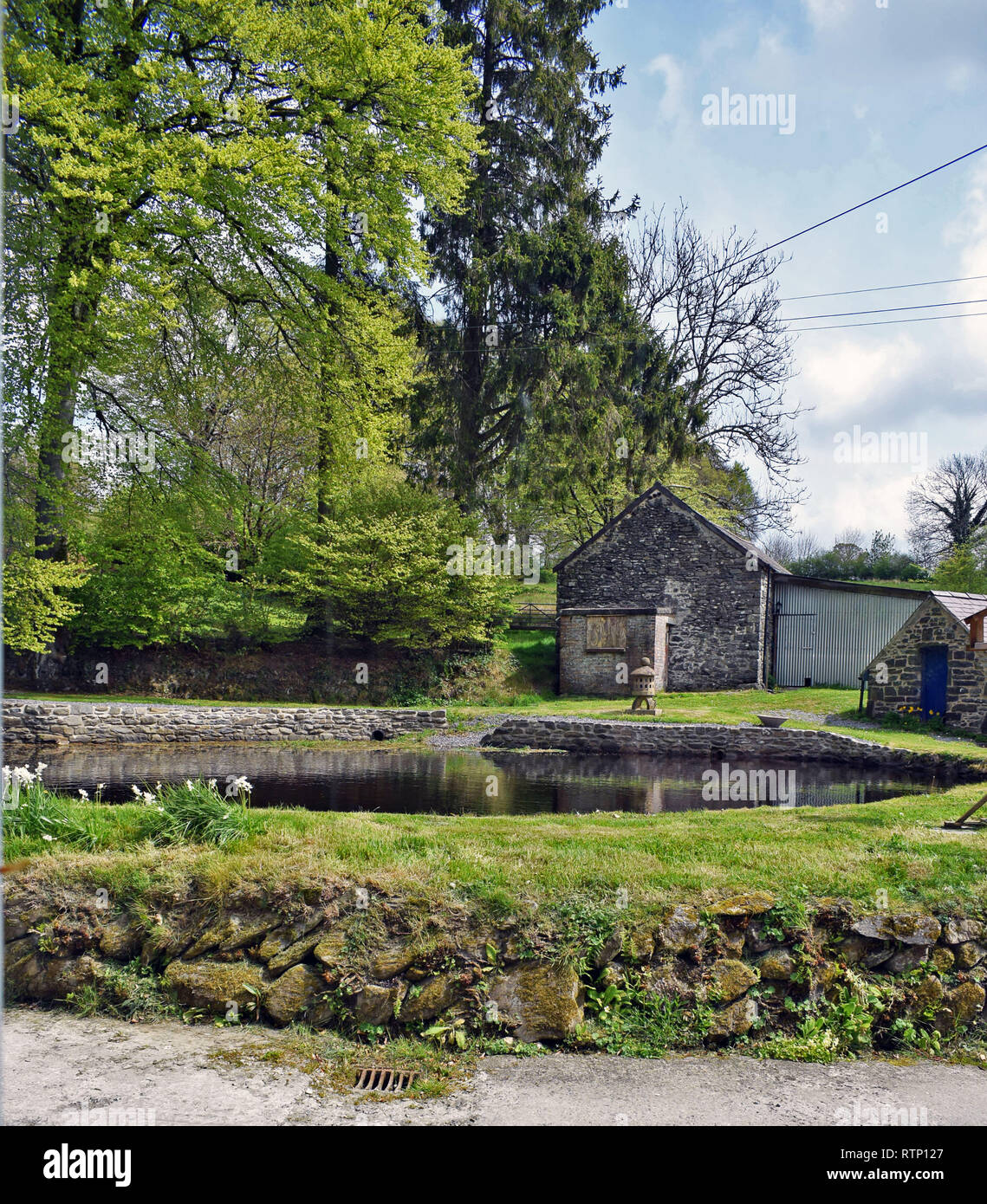 A countryside view of a large pond in front of the green trees and outbuildings - Stock Image
