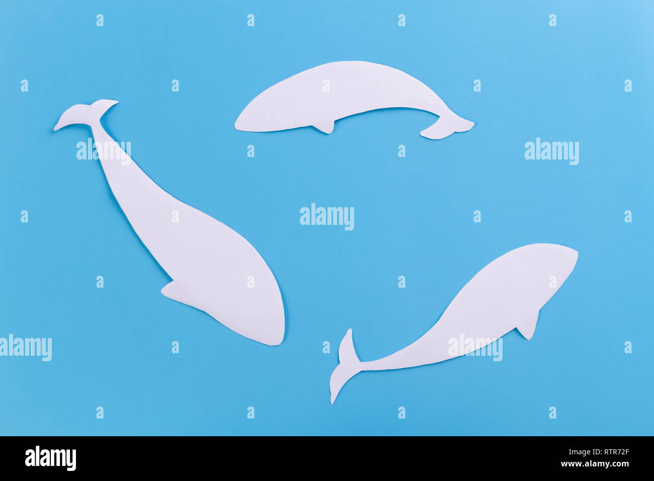 whale in the ocean. paper cut on blue background - Stock Image