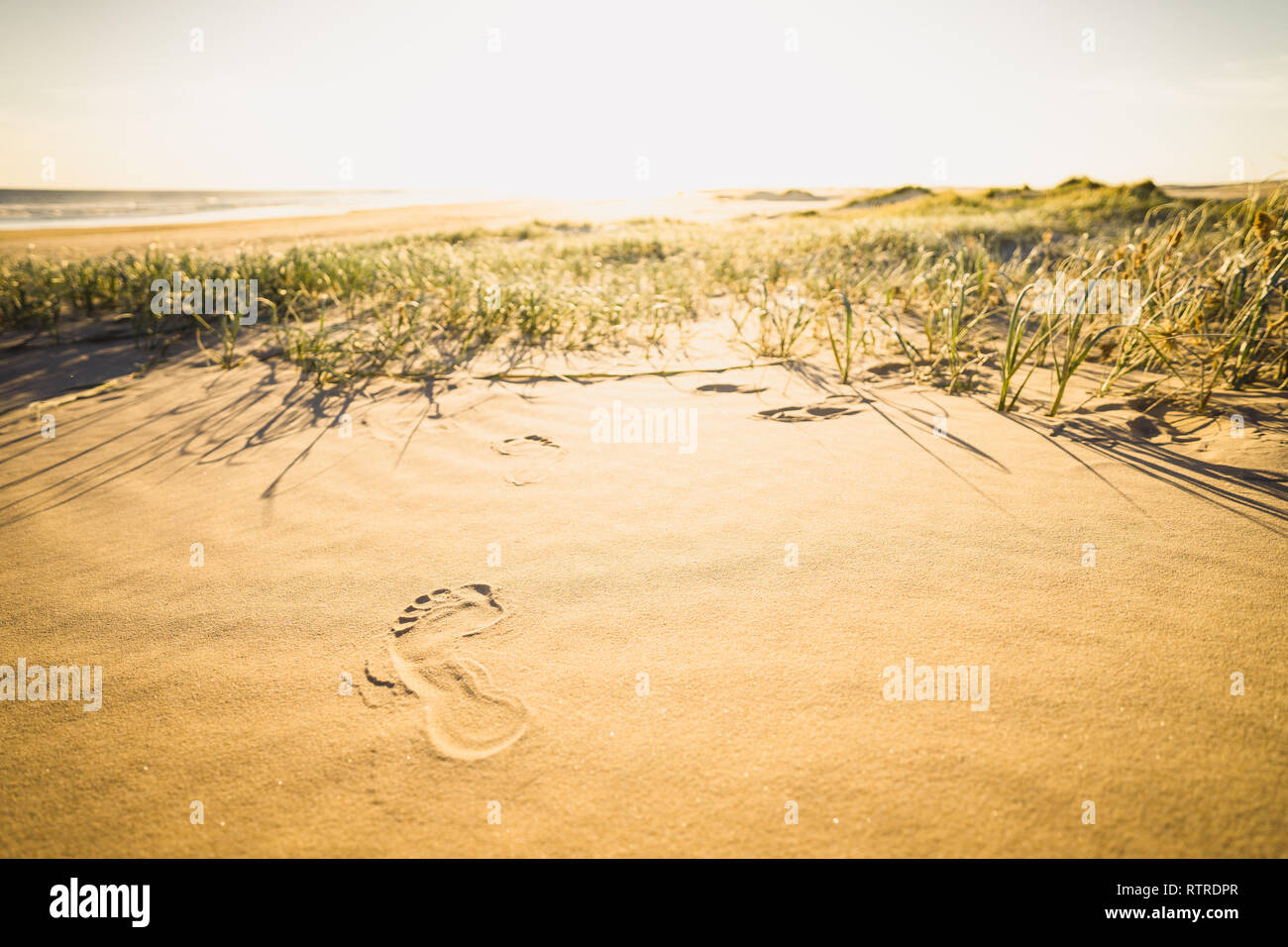 Leave only your footprint - Stock Image