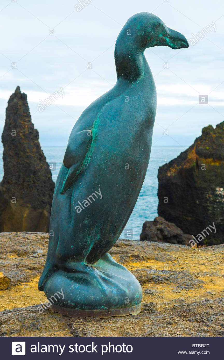 The great auk (Pinguinus impennis) bronze by Artist Todd McGrain. The flightless seabird was hunted to extinction in 1844. - Stock Image